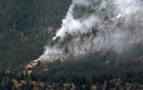 Беспилотники для обнаружения лесных пожаров